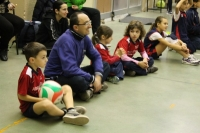 Vedi album 20131213 Scuola Volley